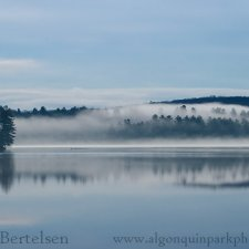 Landscapes of Algonquin & Muskoka - photo 10